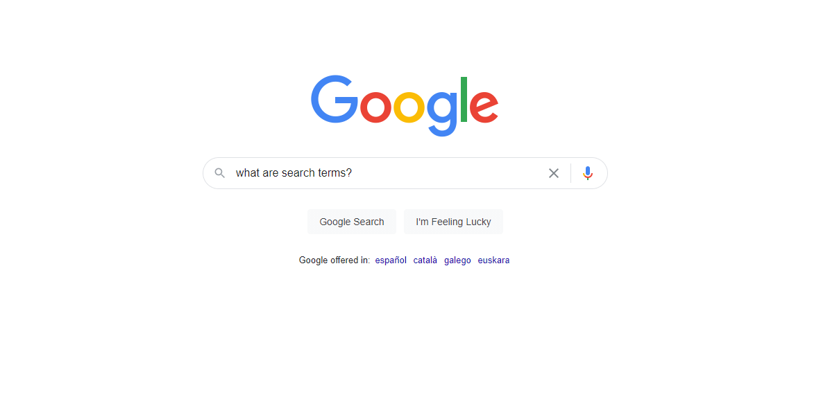 google seach box